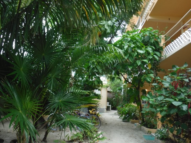 macaw apartments main house holiday lets rentals belize